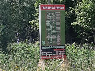 Lot for sale in L'Ange-Gardien (Outaouais), Outaouais, Chemin  Pierre-Joanisse, 20303010 - Centris.ca