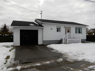 Maison à vendre à Notre-Dame-du-Nord, Abitibi-Témiscamingue, 5, Rue  Leblanc, 15098804 - Centris.ca