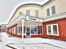 Local industriel à vendre à Boucherville, Montérégie, 110, Chemin  Du Tremblay, 13629339 - Centris.ca