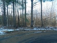 Lot for sale in Waltham, Outaouais, Chemin  Durocher, 19135484 - Centris.ca