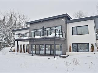 Maison à vendre à Saint-Damien-de-Buckland, Chaudière-Appalaches, 356, Chemin du Lac-Dion, 9740998 - Centris.ca