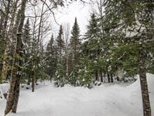 Terrain à vendre à Val-Racine, Estrie, Chemin du Soleil-Levant, 26022714 - Centris.ca