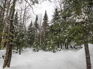 Lot for sale in Val-Racine, Estrie, Chemin du Soleil-Levant, 26022714 - Centris.ca