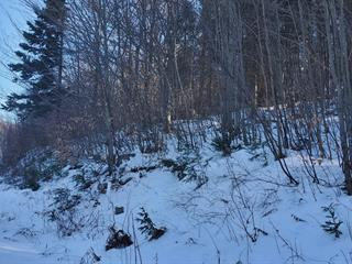 Lot for sale in Sainte-Adèle, Laurentides, Rue du Skieur, 13262215 - Centris.ca