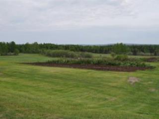 Land for sale in Notre-Dame-du-Rosaire, Chaudière-Appalaches, 229, Rang  Saint-Louis, 15830145 - Centris.ca