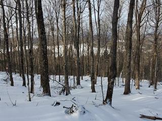 Land for sale in Val-des-Lacs, Laurentides, Chemin  Charron, 21565880 - Centris.ca