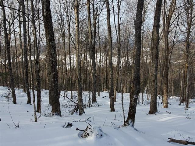 Terre à vendre à Val-des-Lacs, Laurentides, Chemin  Charron, 21565880 - Centris.ca