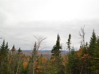 Land for sale in Lac-Beauport, Capitale-Nationale, Chemin du Moulin, 15249283 - Centris.ca