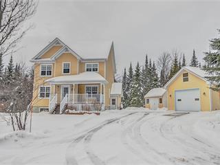 Maison à vendre à Val-Racine, Estrie, 108, Chemin du Soleil-Levant, 9974647 - Centris.ca