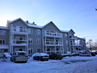 Loft / Studio for rent in Sutton, Montérégie, 53, Rue  Maple, apt. 103, 14734107 - Centris.ca