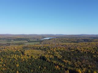 Terre à vendre à Aumond, Outaouais, Montée des Érables, 19159310 - Centris.ca
