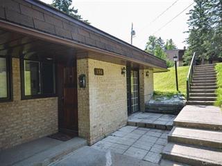 Loft / Studio à vendre à Sainte-Agathe-des-Monts, Laurentides, 176, Rue  Desjardins, 13723533 - Centris.ca