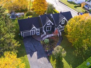 House for sale in Disraeli - Ville, Chaudière-Appalaches, 35, Chemin  Turgeon, 12165899 - Centris.ca