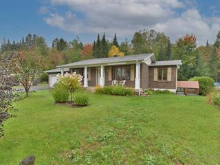 Maison à vendre à Saint-Donat (Lanaudière), Lanaudière, 520, Rue  Allard, 24956885 - Centris.ca