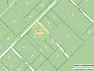 Terrain à vendre à Chertsey, Lanaudière, Rue des Bécassines, 13994619 - Centris.ca