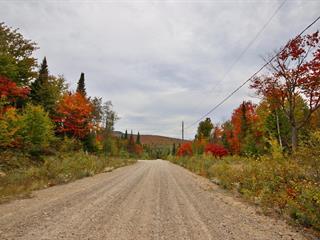 Lot for sale in Saint-Donat (Lanaudière), Lanaudière, Chemin de la Colline, 20909282 - Centris.ca