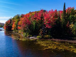 Lot for sale in Wentworth-Nord, Laurentides, Chemin  Lisbourg, 9057880 - Centris.ca