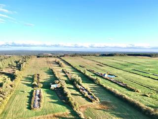 Farm for sale in Sainte-Hélène-de-Kamouraska, Bas-Saint-Laurent, 4150, 4e Rang Ouest, 24226749 - Centris.ca