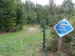 Terrain à vendre à Saint-Roch-de-Mékinac, Mauricie, 4e Rue, 10640004 - Centris.ca