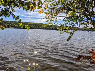 Terrain à vendre à Sainte-Aurélie, Chaudière-Appalaches, Rang  Saint-Joseph, 24095425 - Centris.ca