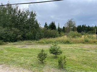 Terrain à vendre à Sept-Îles, Côte-Nord, 151, Rue des Plaquebières, 15300670 - Centris.ca