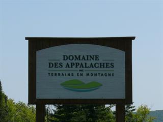 Terrain à vendre à Notre-Dame-des-Bois, Estrie, Chemin du Mélèze, 14974338 - Centris.ca