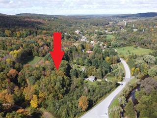 Terrain à vendre à Frelighsburg, Montérégie, 96, Route  237 Sud, 12063280 - Centris.ca