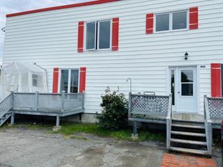 Triplex for sale in Palmarolle, Abitibi-Témiscamingue, 146 - 146B, Rue  Principale, 22477821 - Centris.ca