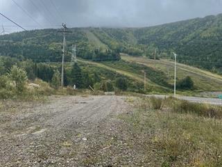 Lot for sale in Murdochville, Gaspésie/Îles-de-la-Madeleine, 620, Avenue des Pionnières, 15843522 - Centris.ca