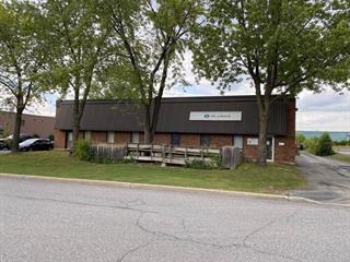 Industrial building for sale in Longueuil (Le Vieux-Longueuil), Montérégie, 589 - 591, Rue  Le Breton, 9334082 - Centris.ca