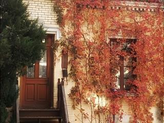 Maison à vendre à Montréal (Le Plateau-Mont-Royal), Montréal (Île), 4000, Rue  Drolet, 17243309 - Centris.ca