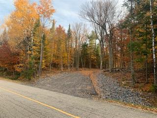 Terrain à vendre à Rivière-Rouge, Laurentides, Montée du Lac-Paquet, 18546628 - Centris.ca