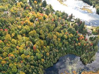 Lot for sale in Lantier, Laurentides, Chemin du Lac-Ludger, 20206050 - Centris.ca