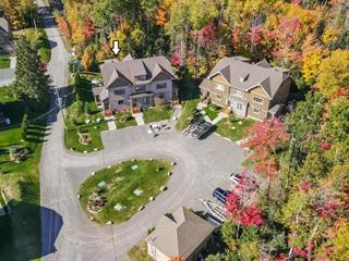 Maison en copropriété à vendre à Saint-Donat (Lanaudière), Lanaudière, 146, Chemin de la Rive-Gauche, 17625469 - Centris.ca
