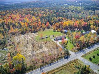 Maison à vendre à Thetford Mines, Chaudière-Appalaches, 422, Chemin du Lac-à-la-Truite, 12933128 - Centris.ca