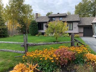 Maison à vendre à Rouyn-Noranda, Abitibi-Témiscamingue, 1256, Avenue  Granada, 12245757 - Centris.ca