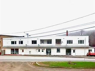 Immeuble à revenus à vendre à Matapédia, Gaspésie/Îles-de-la-Madeleine, 1, Rue des Saumons, 20494826 - Centris.ca