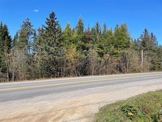 Lot for sale in Notre-Dame-de-la-Salette, Outaouais, Chemin des Grands-Danois, 21628157 - Centris.ca