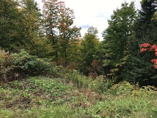 Terrain à vendre à Notre-Dame-des-Bois, Estrie, Grand ch. de l'Est, 26279757 - Centris.ca