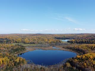 Terre à vendre à Montcerf-Lytton, Outaouais, Chemin de Montcerf, 12261559 - Centris.ca