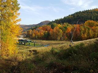 Terrain à vendre à Lac-Sainte-Marie, Outaouais, 21, Chemin du Radar, 19585128 - Centris.ca