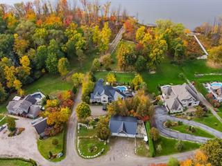 Maison à vendre à Pontiac, Outaouais, 65, Chemin du Sumac, 12451846 - Centris.ca