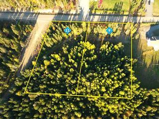 Lot for sale in Sainte-Lucie-des-Laurentides, Laurentides, Chemin  Adrien, 27538218 - Centris.ca