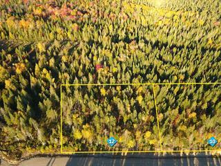 Lot for sale in Sainte-Lucie-des-Laurentides, Laurentides, Chemin  Adrien, 19634870 - Centris.ca