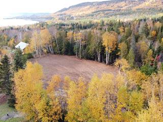 Terrain à vendre à Nouvelle, Gaspésie/Îles-de-la-Madeleine, Route  Wafer, 9638510 - Centris.ca