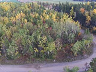Lot for sale in Rivière-Ouelle, Bas-Saint-Laurent, Chemin de la Cédrière, 28068029 - Centris.ca