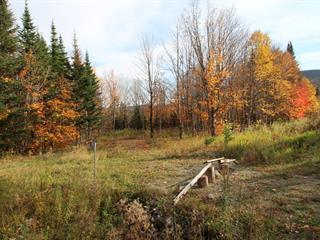 Terrain à vendre à Notre-Dame-des-Bois, Estrie, 88, Chemin des Étoiles, 18665657 - Centris.ca
