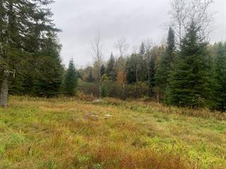 Terrain à vendre à Rivière-Rouge, Laurentides, Chemin du Lac-Kiamika, 19389796 - Centris.ca
