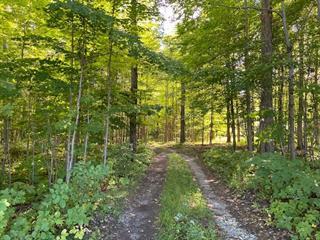 Land for sale in Saint-Valérien-de-Milton, Montérégie, 216, Petit-11e Rang, 25061562 - Centris.ca