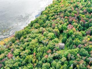 Land for sale in Sainte-Marguerite-du-Lac-Masson, Laurentides, 171, Rue du Lac-Goulet, 26715177 - Centris.ca